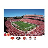 NCAA Georgia Bulldogs Sanford Stadium Mural Wall Graphic at Amazon.com