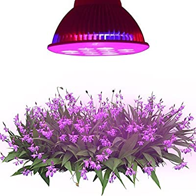 LE® Red + Blue for Hydroponic Plants, 12W PAR38 E27 LED Grow Lights, 30 degree Beam Angle, 3 Bands, Plant Lights, Flowers, Vegetables, Greenhouse Lighting , Grow Light Bulbs