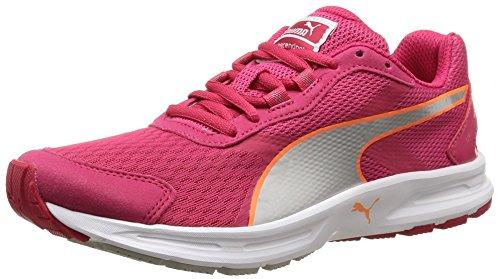 PumaDescendant V3 Wn - Scarpe Running Donna , rosa (Pink (rose red-puma silver-fluo peach 06)), 39 EU