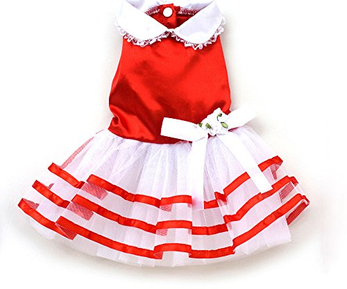 XING YU Satin Stripe TUTU Dress, Red, Medium