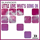 Little Love (What's Going On)