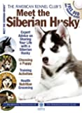 Meet the Siberian Husky