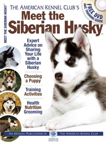 Meet the Siberian Husky (AKC Meet the Breed Series)