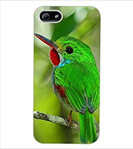 ColourCraft Lovely Bird Design Back Case Cover for APPLE IPHONE 5S