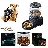 Mvpower Distributeur de Nourriture Croquettes Automatique 5.5 LITRES Pour Pet Chien Chat - Best Reviews Guide