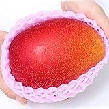 ぐるめライン 宮崎県産 特大マンゴー 完熟 アップルマンゴー 3L~4Lサイズ 1個