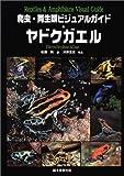 爬虫・両生類ビジュアルガイド ヤドクガエル
