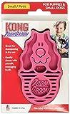 コング (Kong) ラバーブラシ 犬用 S ピンク