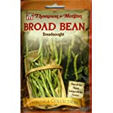Thompson & Morgan 4868 Heirloom Bean Fava Bean Dreadnought Double Seed Packet