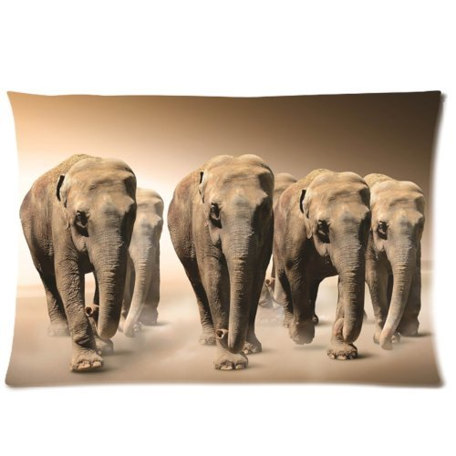 Baby Pillow Cases front-1033350