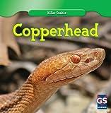 Copperhead (Killer Snakes)
