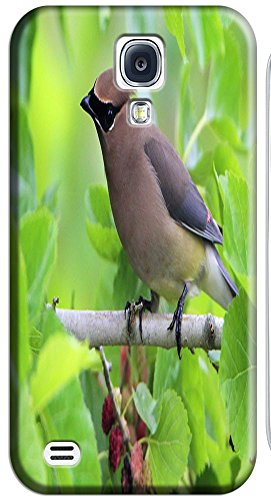 Phones Accessories Nice Birds Stand On The Trees Cute Design Cases For S4 I9500 # 5