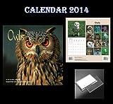Owls Calendar 2014 (Magnum) + Acrylic Blank Fridge Magnet