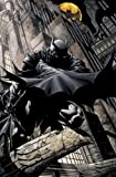 Grant Morrison Batman Time And The Batman TP