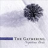 Nighttime Birds by Gathering [Music CD]