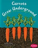 Carrots Grow Underground (How Fruits and Vegetables Grow)
