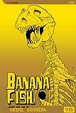 Banana Fish 15 (Banana Fish (Graphic Novels))