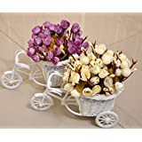 TiedRibbons® Flower Vase Rickshaw Shape With Flower Bunches(Set Of 2)