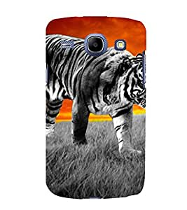 tiger a beautifull and powerfull creation of nature 3D Hard Polycarbonate Designer Back Case Cover for Samsung Galaxy Core i8262 :: Samsung Galaxy Core i8260