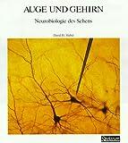 Image de Spektrum-Bibliothek, Bd.20: Auge und Gehirn. Neurobiologie des Sehens