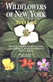 img - for Wildflowers of New York in Color book / textbook / text book