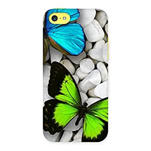 Voila Colorfull Butterflies Back Case Cover for iPhone 5C