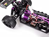 Amewi-22031-Buggy-Booster-24-GHz-M-110-RTR-farblich-sortiert