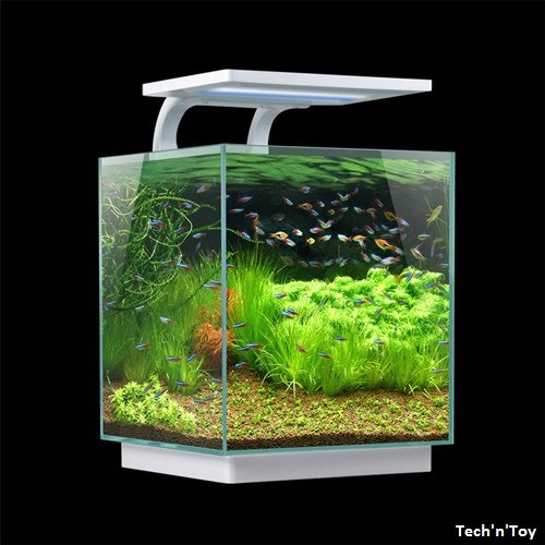 SUNSUN GLASS SHRIMP FISH TANK DESKTOP MINI AQUARIUM KIT 4 GAL W/ SMART ...