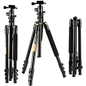 K&F Concept TM2324 62-inch Professional SLR Camera Tripod with Ball Head Bag for DSLR