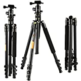 KF-Concept-TM2324-62-inch-Professional-SLR-Camera-Tripod-with-Ball-Head-Bag-for-DSLR