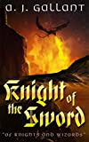 Knight of the Sword (of Knights and Wizards Book 3)