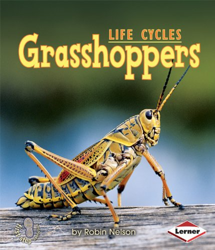 Grasshoppers (First Step Nonfiction (Paperback))