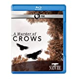 Nature A Murder of Crows Blu-Ray
