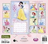 2011  Princess  Wall Calendar