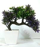 HYPERBOLE Bonsai Assorted Artificial Plant with Pot