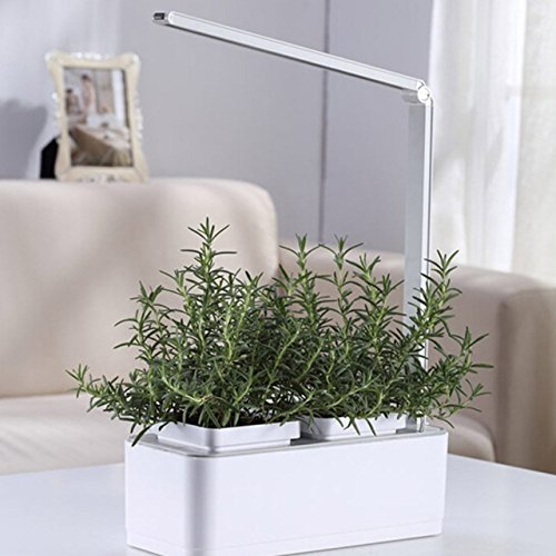 Smart Hydroponics Indoor Herb Garden Kit By SavvyGrow- Growing System With 2 Self-Watering Herb Garden Pots, Seeds, Fertilizer, Planting Medium, White LED Grow Light - All In 1 System Ready To Grow (Aeroponics Timer compare prices)