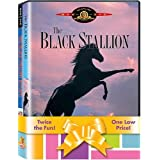 Black Stallion/The Black Stallion Returns (Widescreen/Full Screen)by Kelly Reno