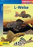 L-Welse, Faszination - Dr. Jürgen Schmidt