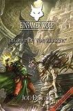Einsamer Wolf (9) - Die Ruinen von Zaaryx (3939212156) by Joe Dever
