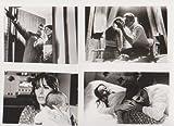 映画スチール 「赤ちゃんよ 永遠に」白黒9枚