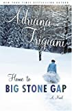 Home to Big Stone Gap (Big Stone Gap Novels)