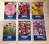 *BEDDING, BORDER & CONTAINER SEED COLLECTION* Begonia, Poppy, Larkspur, Lavatera, Marigold & Candytuft
