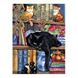 SunsOut On The Shelf Jigsaw Puzzle - 100...