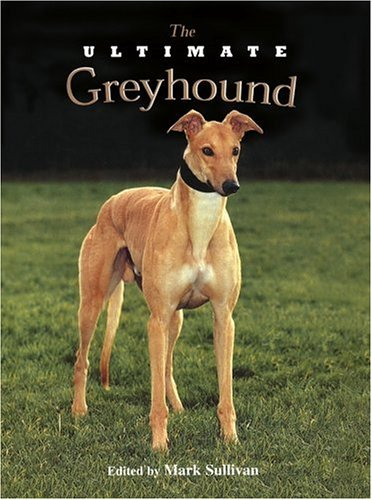 Ultimate Greyhound, MARK SULLIVAN