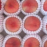 【おひさま果樹園より直送・旬の品種でお届け♪ ご注文の翌日出荷】桃の王様「あかつき」,「川中島白桃」,「ゆうぞら」特秀品 中玉12個入り 3㎏
