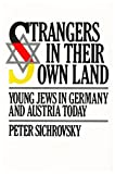 img - for Strangers in Their Own Land: Young Jews in Germany and Austria Today book / textbook / text book