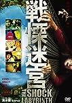 戦慄迷宮 スタンダード・エディション [DVD]