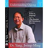Understanding Qigong DVD1: Dr. Yang ~ Dr. Yang Jwing-Ming