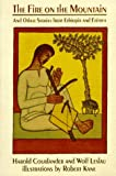 img - for The Fire on the Mountain, and Other Stories from Ethiopia and Eritrea: And Other Stories from Ethiopia and Eritrea (An Owlet Book) book / textbook / text book