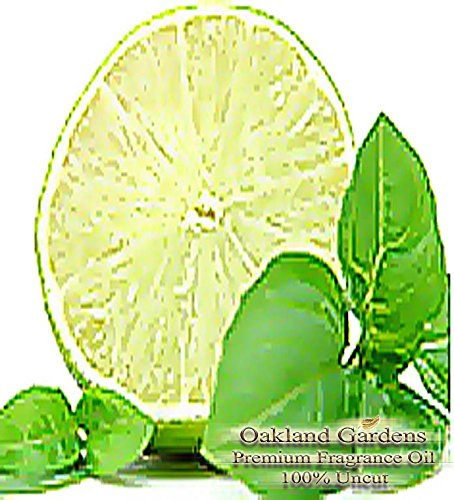 BULK Fragrance Oil – COOL CITRUS BASIL Fragrance Oil – Blend of fresh, just picked garden greens and basil accented with sparkling lime – By Oakland Gardens (120 mL – 4.0 fl oz Bottle)